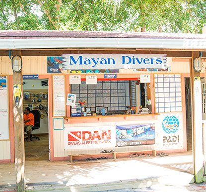 Mayan Diving Experience