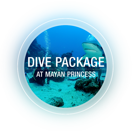 Dive Package at Mayan Princess